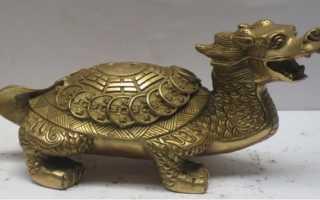 Черепаха символ чего: что означает талисман по учению фен шуй