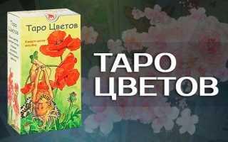 Обзор колоды Таро Цветов: история создания, особенности, символы