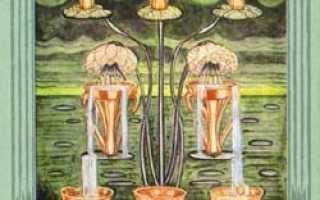 8 Чаш Таро Тота: общее значение и описание карты