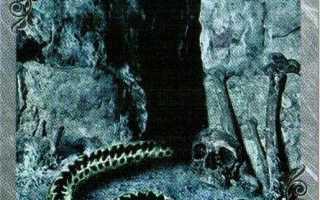 Змея Ленорман: значение и толкование карты