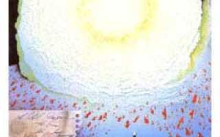 Таро-гороскоп для Раков на август 2020 года от колоды Таро Книга Теней Том 2