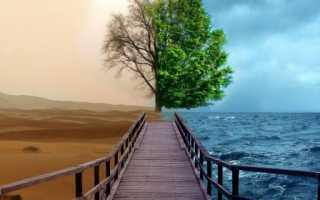 Рунический став Отменяющий болезнь, негатив, препятствия