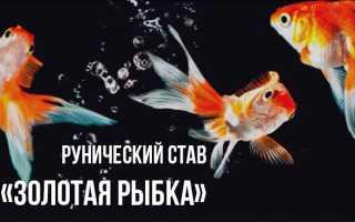 Рунический став «Золотая Рыбка»: схема, нанесение, оговор, активация, отзывы