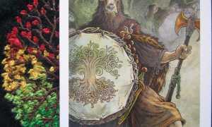 Таро Дикого Леса: галерея, история создания, кому подойдёт колода